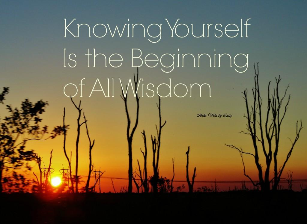knowing-yourself-is-the-beginning-of-all-wisdom (1)