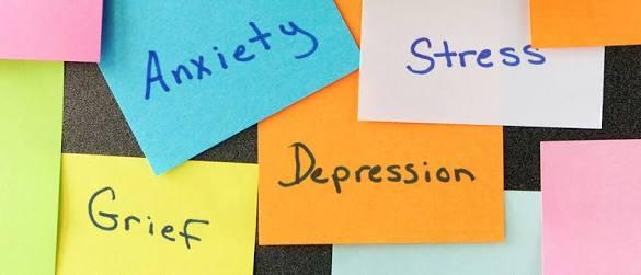 sue-kohn-taylor-anxiety-grief-depression-stress