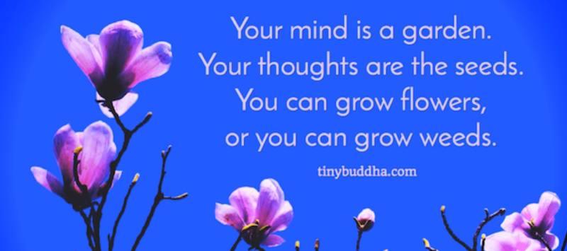 sue-kohn-taylor-thoughts-garden